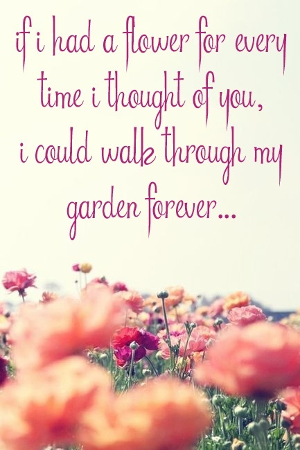 Related For Love Quotes For Propose Day
