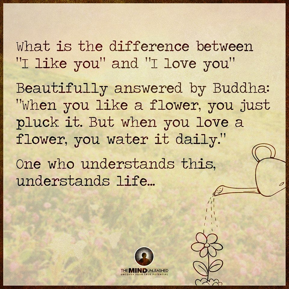 Beautifully Answered By Buddha When You Like A Flower You Just Pluck It But When You Love A Flower
