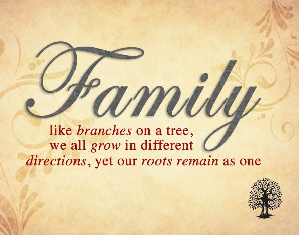 Bible Quotes About Family Unity Image Quotes Bible Quotes About Family Unity Quotations Bible Quotes About Family Unity Quotes And Saying Inspiring Quote