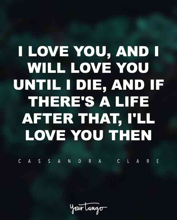 I Love You And I Will Love You Until I Die And If Theres A Life After That Ill Love You Then  E   C Andra Clare City Of Gl