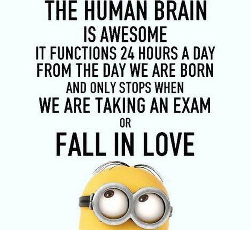 Funny Minion Love Quote