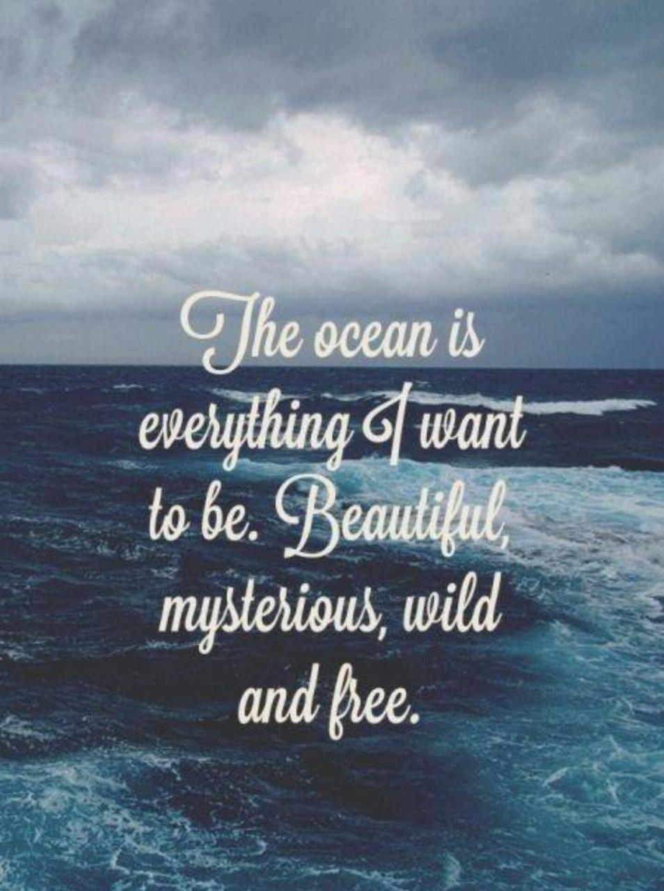 I Am The Ocean S J
