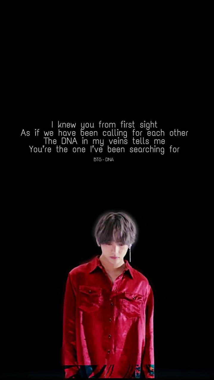 I Knew You From The First Sight Bts_dna Vs Part