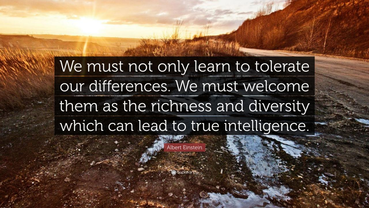 Albert Einstein Quote We Must Not Only Learn To Tolerate Our Differences We