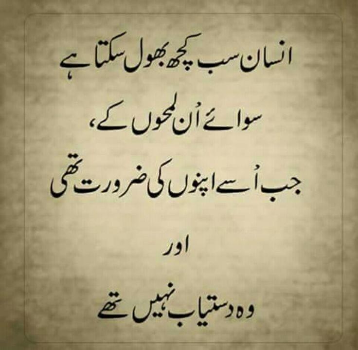 Urdu Quotes Poetry Quotes Bats Feelings