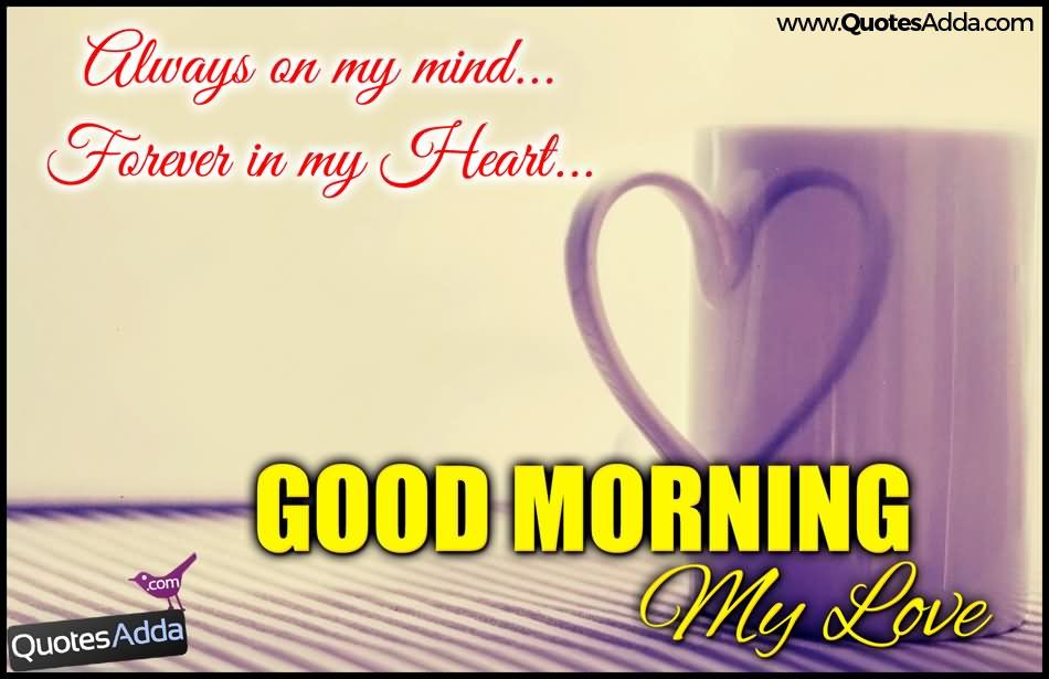 Best My Love Wishes Quotes And Good Morning Love Quotes With Beautiful Images And Amazing Love Messages