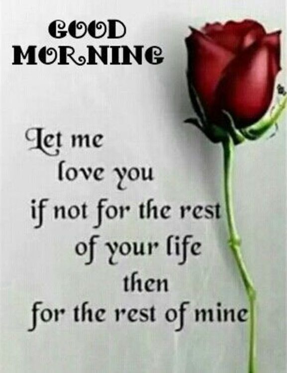 Good Morning Quotes Love Sayings Good Morning Let Me Love You Love It