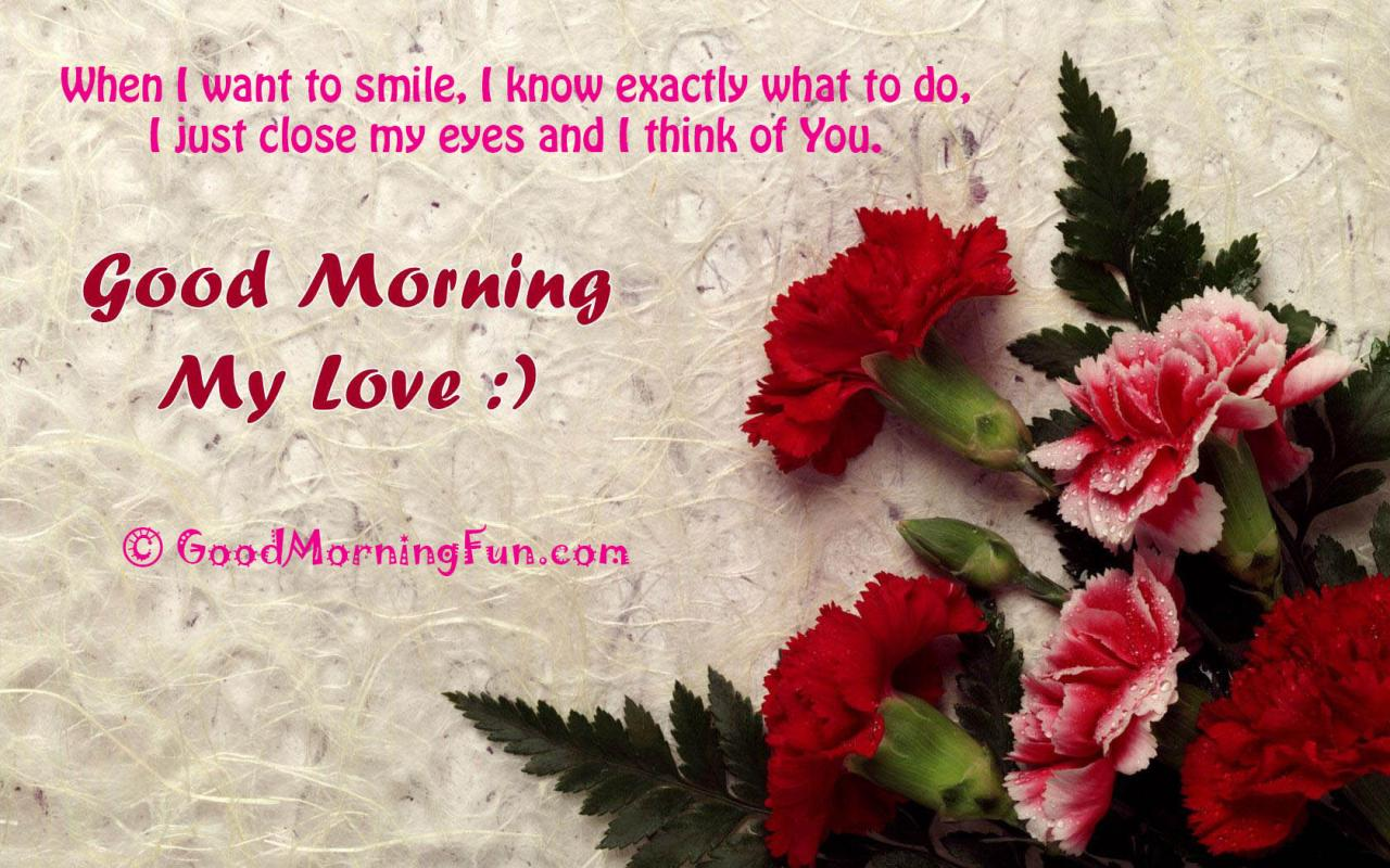Hd Google Morning Roses Pictures With Love Quotes