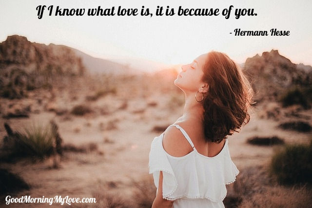 Good Morning Quotes For Her Hermann Hesse Love Quotes For Him