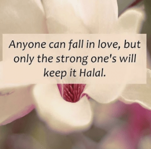 Islamic Quotes About Love Before Marriage
