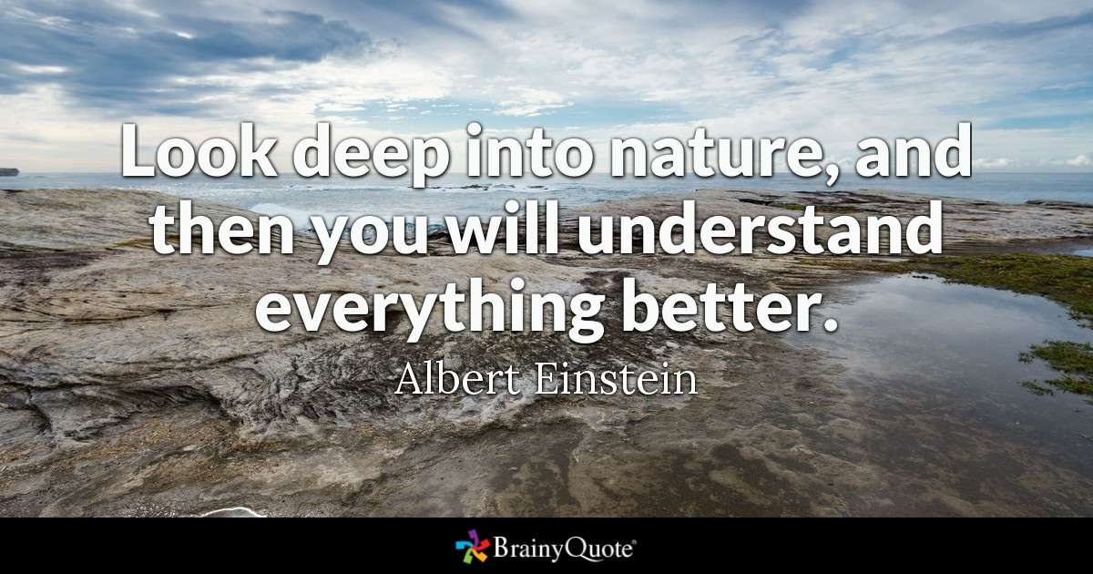 Look Deep Into Nature And Then You Will Understand Everything Better Albert Einstein