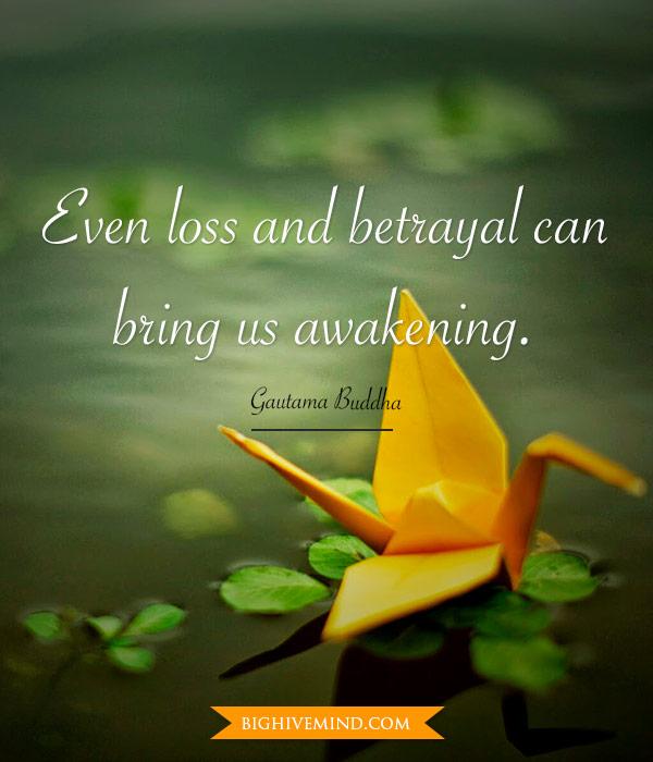 Buddha Quotes Even Loss And Betrayal