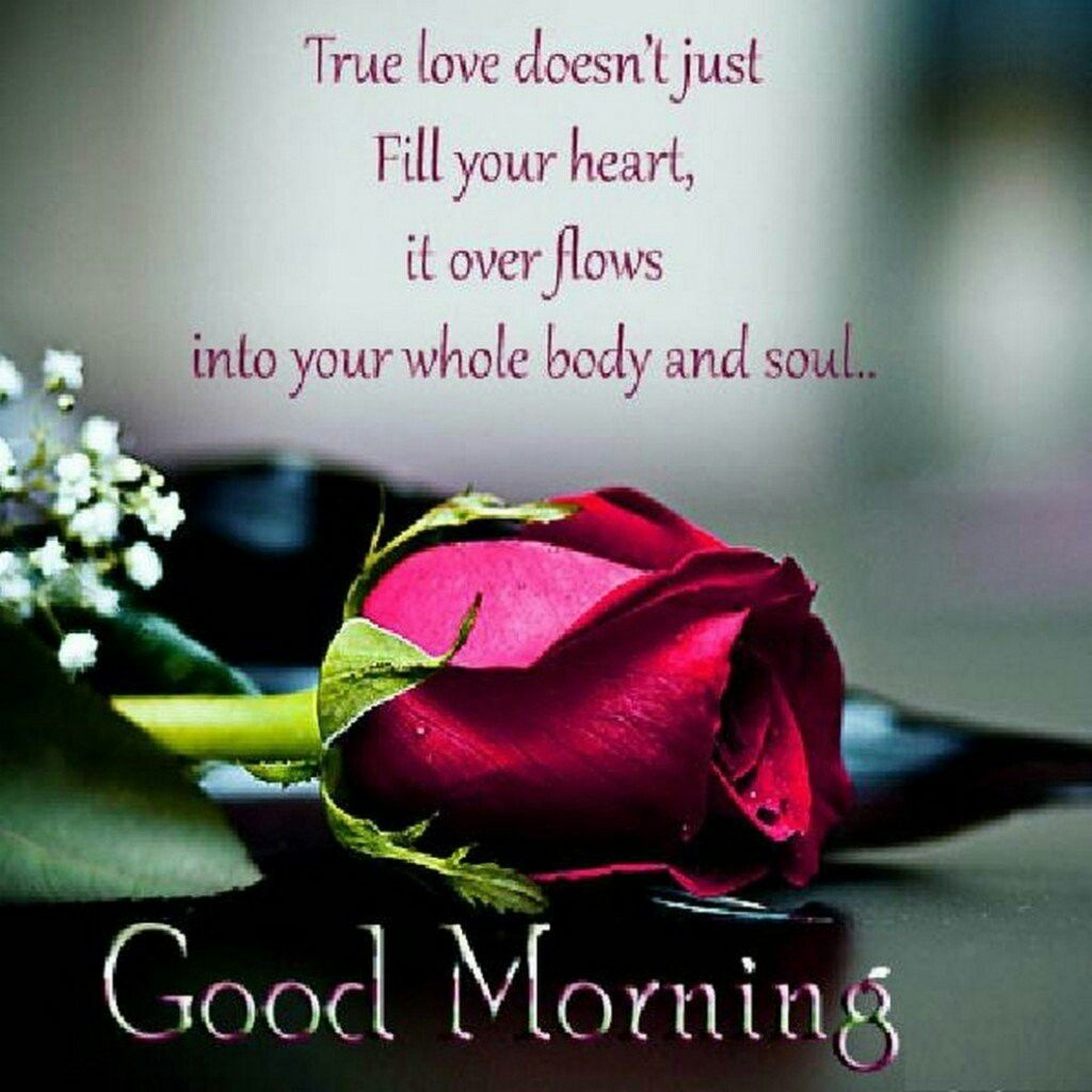 Good Morning Quotes Love Sayings True Love Doesnt Just Fill Your Heart Morning Quotes About Love Thoughts True Love Doesnt Just Fill Your Heart It Over