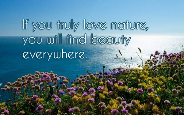 If You Truly Love Nature You Will Find Beauty Everywhere The Gecko Said Beautiful Quotes