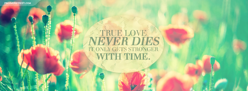 True Love Gets Stronger With Time Quote Cover