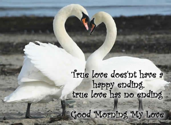 True Love Doesnt Have A Happy Ending True Love Has No Ending Good Morning My Love
