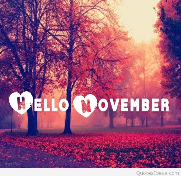 O Love November Quote Favim Com  Aebaaafdeca