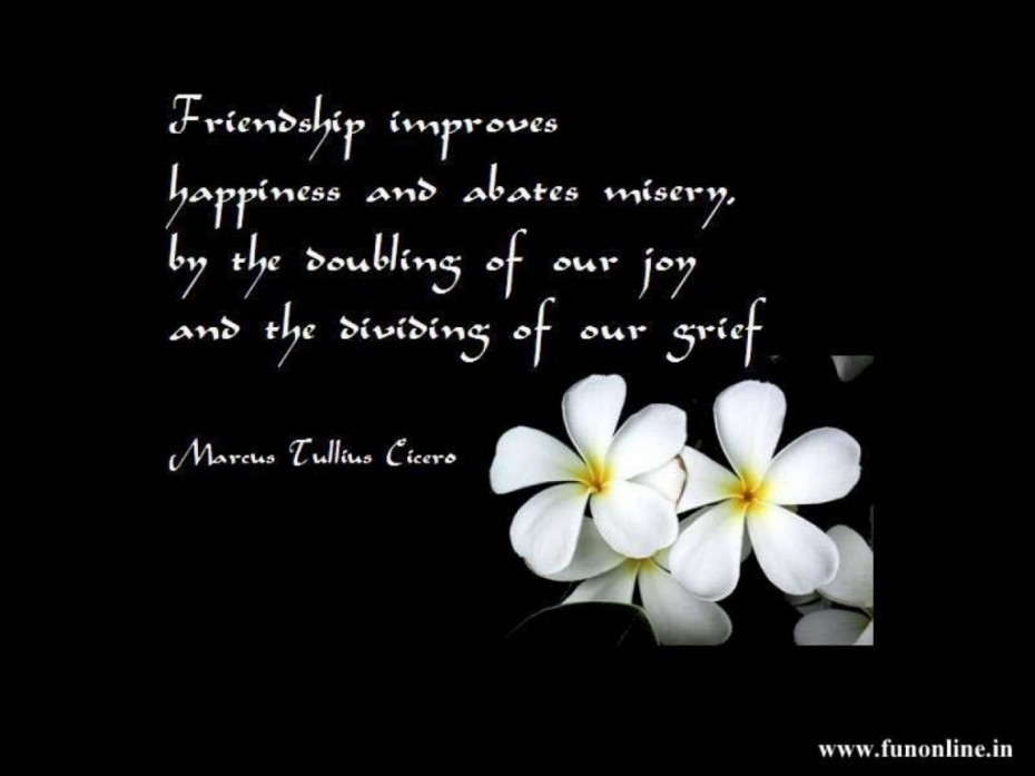 I Love You Because You Are My Best Friend Quote And The Picture Of The White Flower