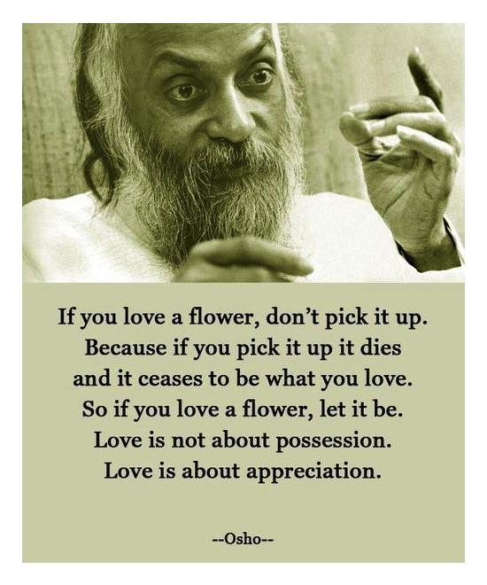 Love Is Appreciation