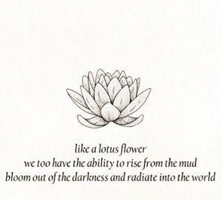 Love Quote Zengardenamaozn Buddha Lotus Flower