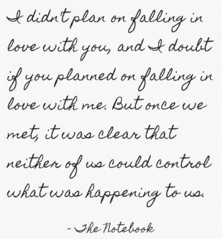 I Didnt Plan On Falling In Love With You Neither Of Us Could Control What Was Happening To Us