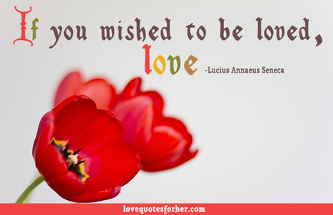 Wish You Loved Me Like Love You Quote