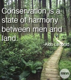 A Beautiful Quote Conservation Is A State Of Harmony Between Men And Land