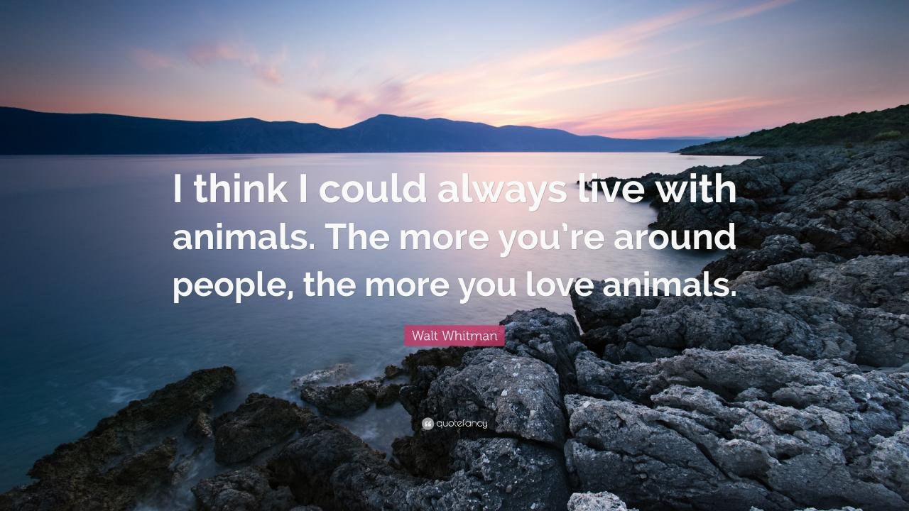 Walt Whitman Quote I Think I Could Always Live With Animals The More