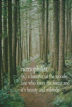 Nemophilist A Haunter Of The Woods One Who Loves The Forest And Its Beauty And Solitude
