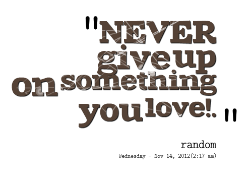 Never Give Up On Something You Love