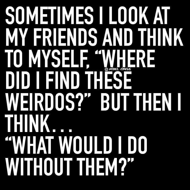 Best Friendship Pictures Quotes Quotes And Humor
