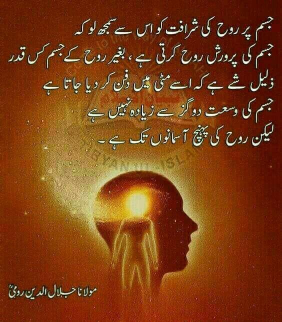 Explore Jalaluddin Rumi Rumi Quotes On Love And More