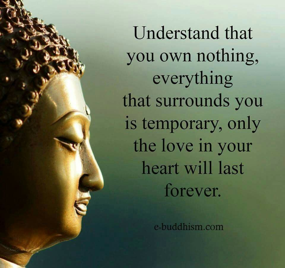 Understand That You Own Nothing Everything That Surrounds You Is Temporary Only The Love Zen Quotesbuddha