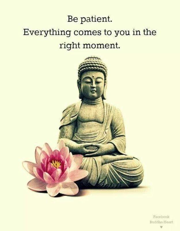Top  Quotes From Meditation Master Shakyamuni Buddha To Inspire Meditationwisdom Peace And Love