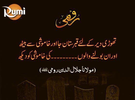 Rumi Love Quotes In Urdu Best Quote