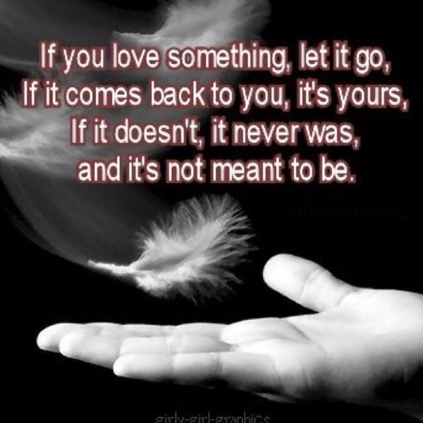 Bestiny Quotes Sayings Let It Go