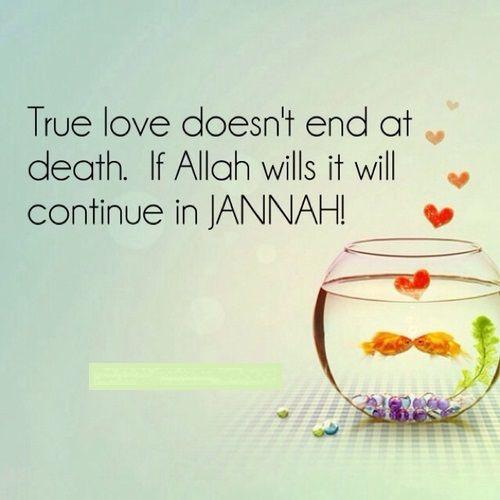 I F Allah Wills