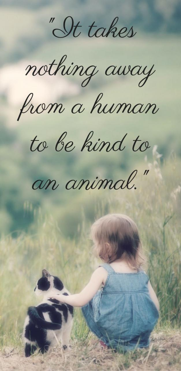 For Animal People Animal Love Quotesanimal