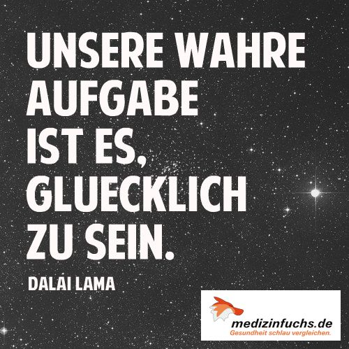 Zitat Quote Spass Gluck Freude Fun Zufriedenheit Dalailama Www Medizinfuchs De Ist Der Beste Preisvergleich In Deutschland Fur Medikamente