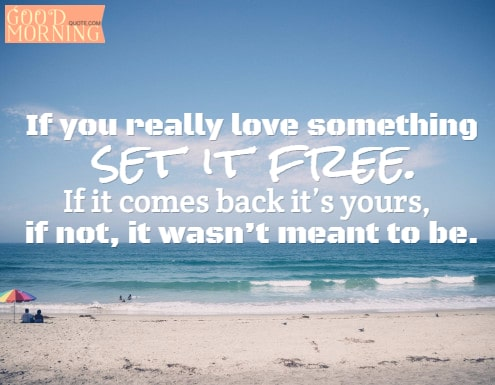 If You Really Love Something Set It Free If It Comes Back Its Yours If Not It Wasnt Meant To Be Cheer Up Quotes