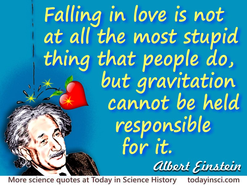 Albert Einstein Quote Falling In Love Is Not At All The Most Stupid Thing