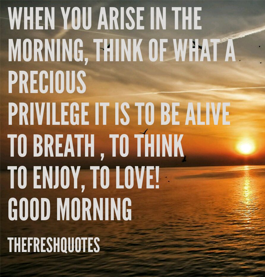 Good Morning Quotes Morning Greetings