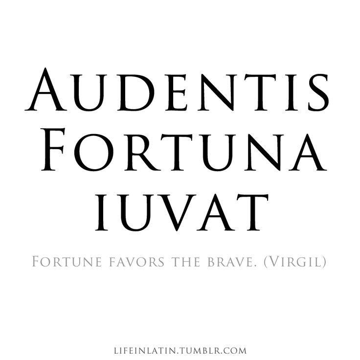 Latin Quotes About Friendship Gorgeous Latin Quotes About Friendship  Quotesbae