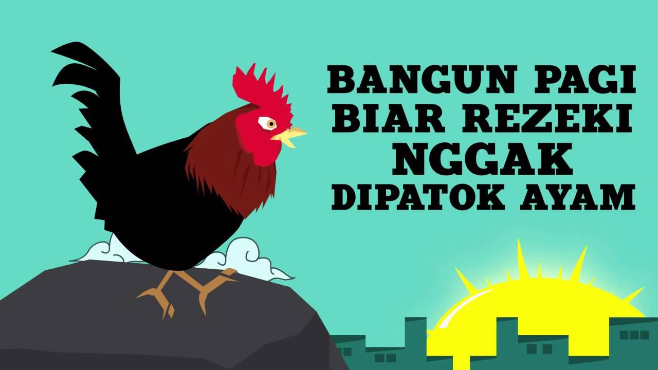 Meme Lucu Ayam Dp Bbm Lucu Untuk Hari Ini