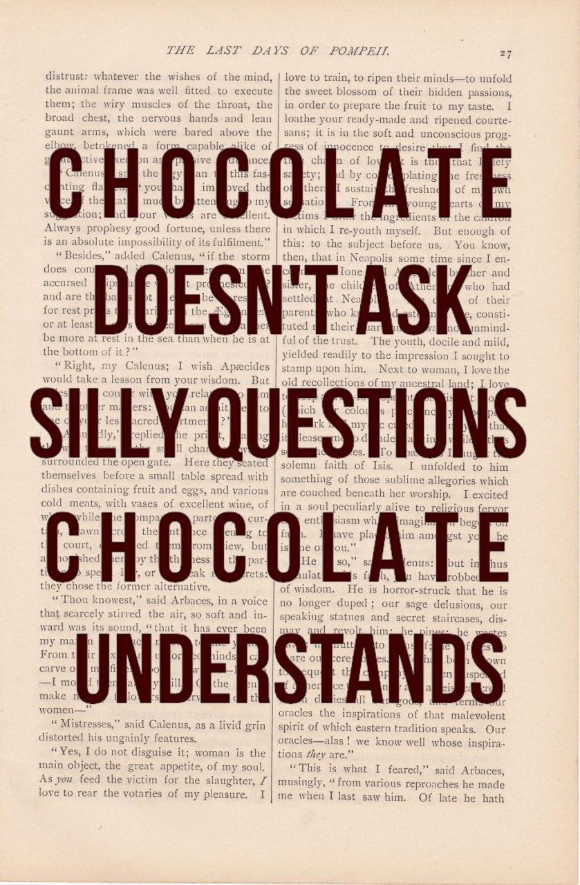Chocolate Doesnt Ask Silly Questions Chocolate Understands Art Quote