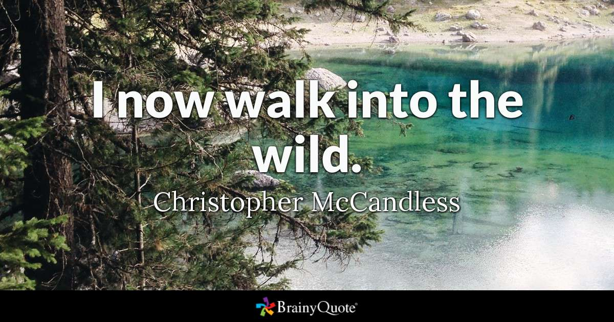 I Now Walk Into The Wild Christopher Mccandless