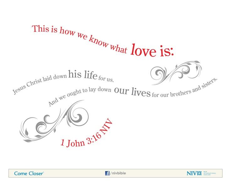 Niv Bible Verse About Love