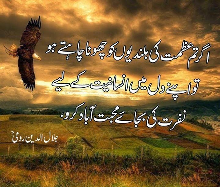 Maulana Rumi Quotes And Sayings In Urdu