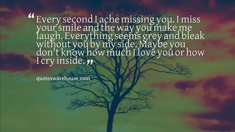 Every Second I Ache Missing You I Miss Your Smile And The Way You Make Rate This Quote