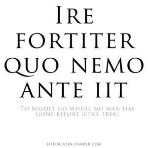 Pinterest Fake Latin Quote